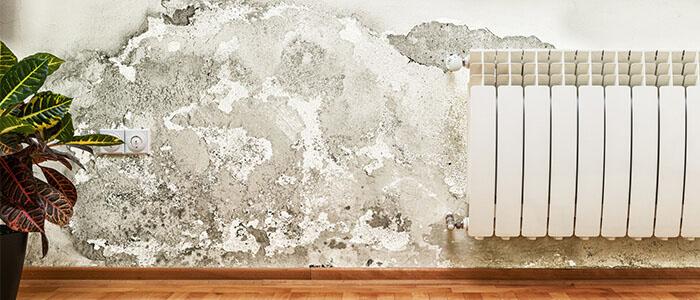 Eine durch Schadstoffe beschädigte Wand